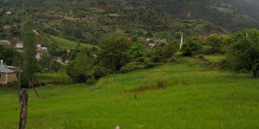 Torul Bahçelik Köyü Resimleri