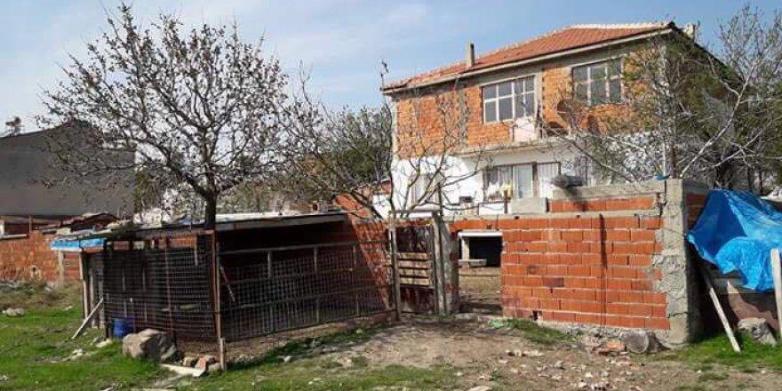 Yunusemre Osmancalı Köyü Resimleri