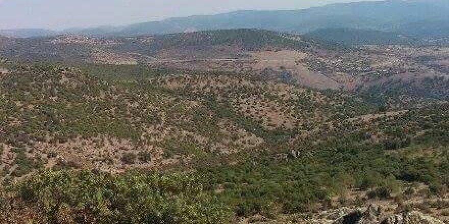 Yunusemre Örselli Köyü Resimleri