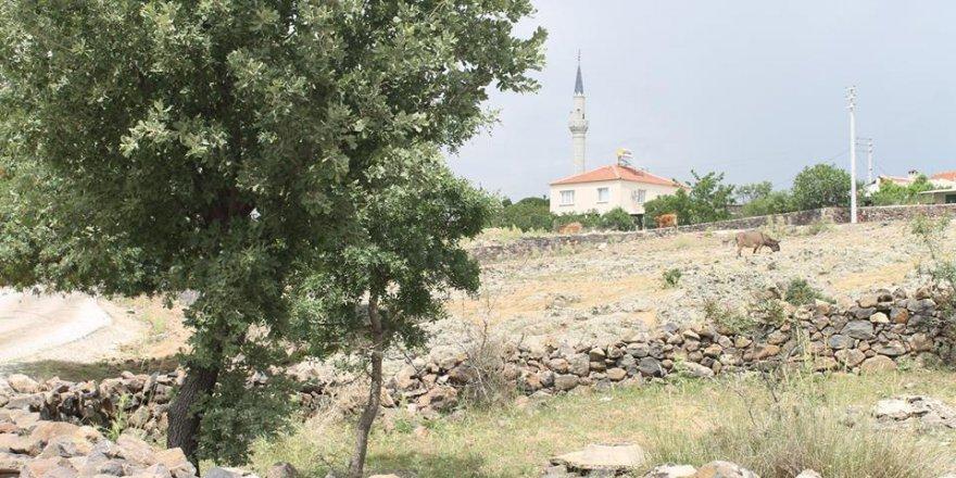 Yunusemre Yuntdağıköseler Köyü Resimleri