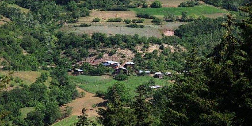 Artvin Ardanuç Akarsu Köyü Resimleri