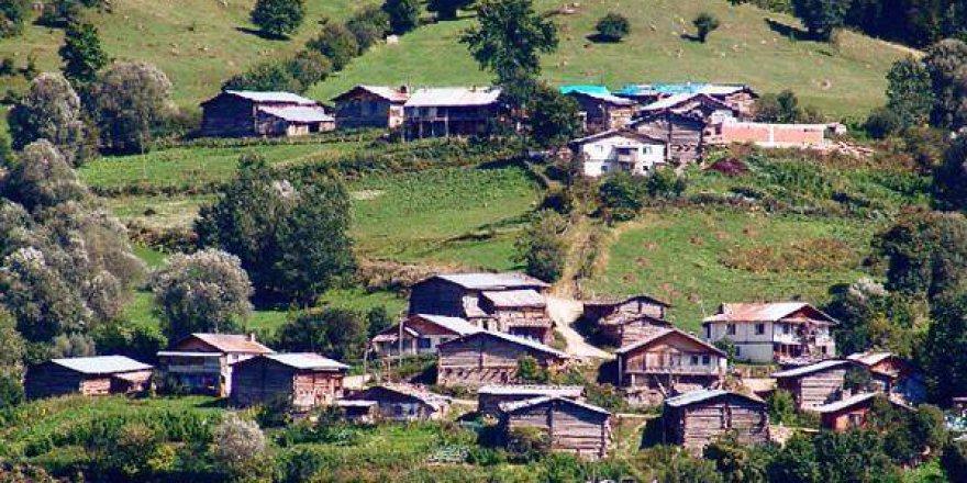 Artvin Ardanuç Bereket Köyü Resimleri