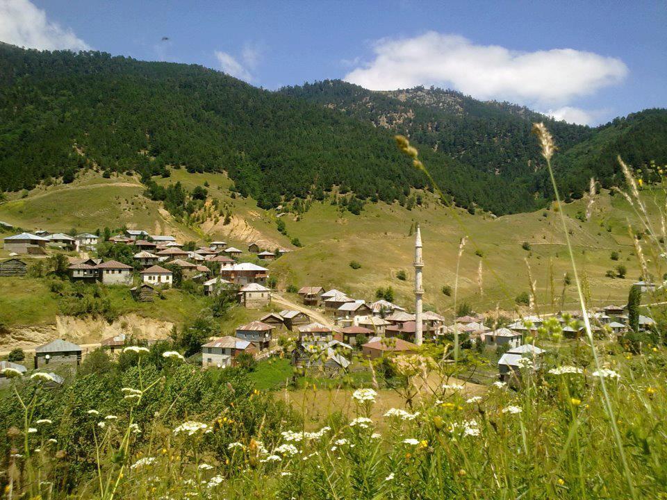 Alucra Tohumluk Köyü Resimleri 1