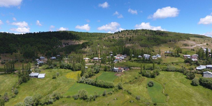 Alucra Yeşilyurt Köyü Resimleri