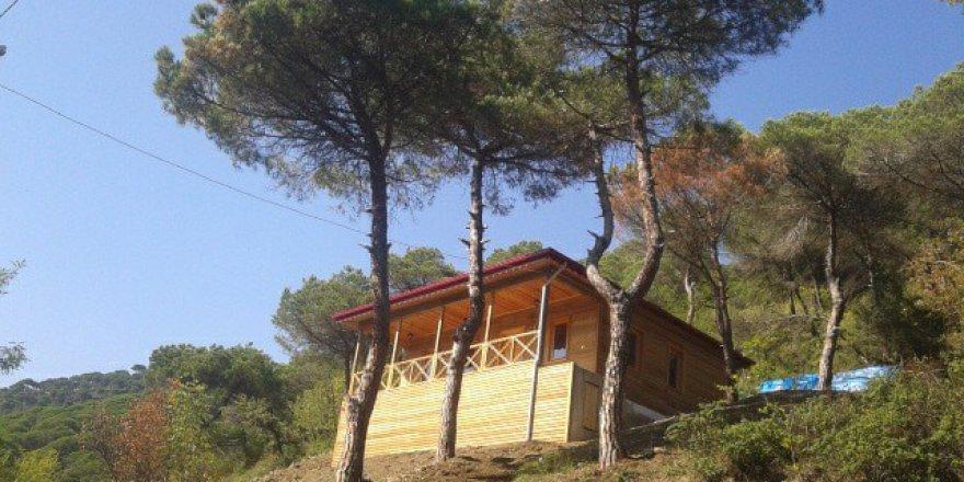 Akçaabat Yeşiltepe Köyü Resimleri