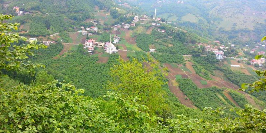 Akçaabat Yeşilyurt Köyü Resimleri