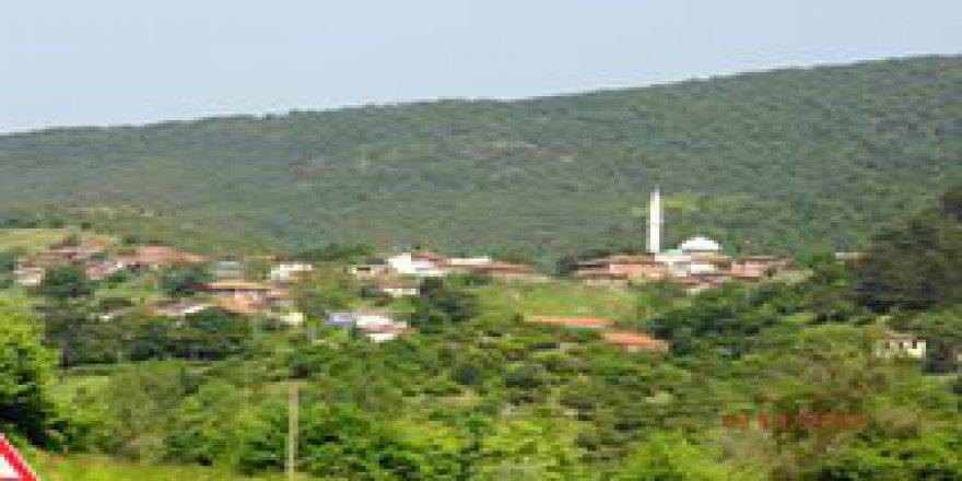 Biga Akkayrak Köyü Resimleri