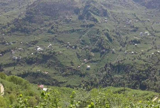 Araklı Değirmencik Köyü Resimleri 1