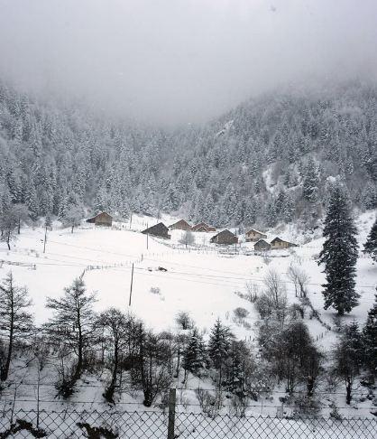 Araklı Erikli Köyü Resimleri 1