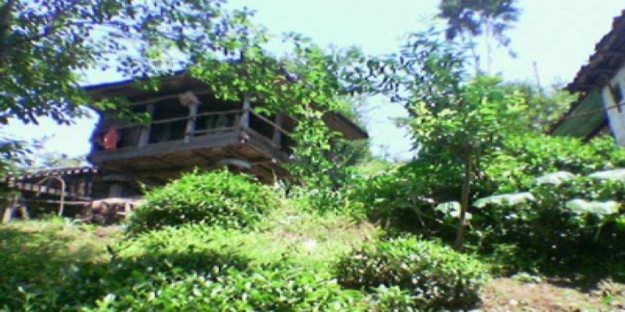 Artvin Hopa Güvercinli Köyü Resimleri