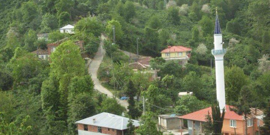 Bulancak Samugüney Köyü Resimleri