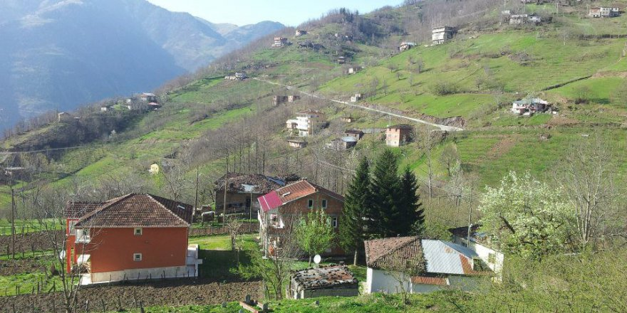 Araklı Kayacık Köyü Resimleri