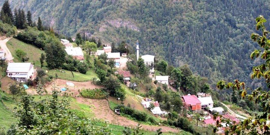 Araklı Kayaiçi Köyü Resimleri
