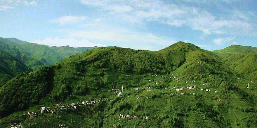 Araklı Pervane Köyü Resimleri