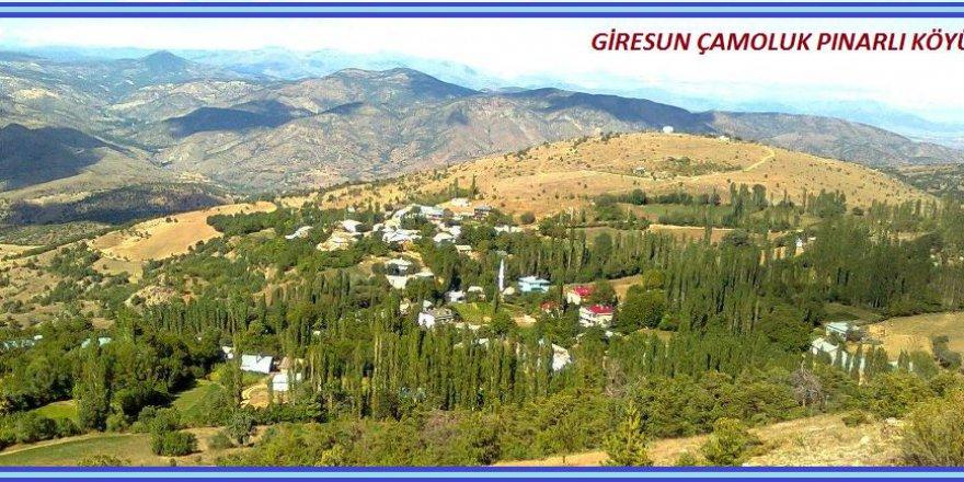 Çamoluk Pınarlı Köyü Resimleri