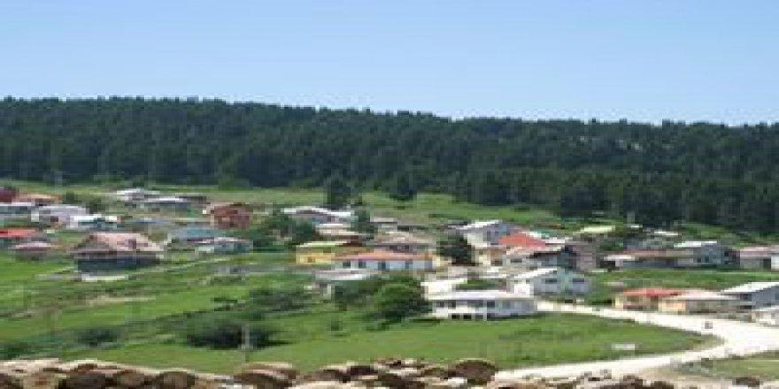 Dereli Akkaya Köyü Resimleri