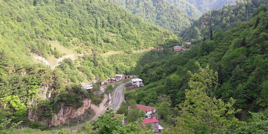 Dereli Alancık Köyü Resimleri
