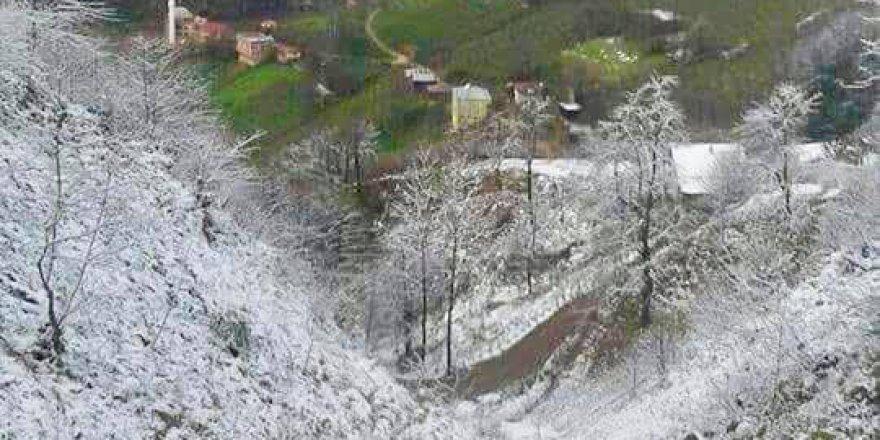 Dereli Çalköy Köyü Resimleri