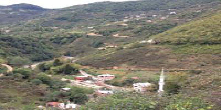 Dereli Çamlı Köyü Resimleri