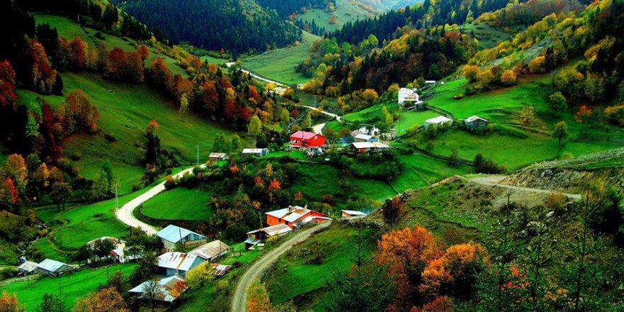 Dereli Güzyurdu Köyü Resimleri