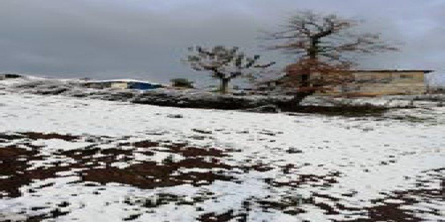Çan  Asmalı Köyü  Resimleri