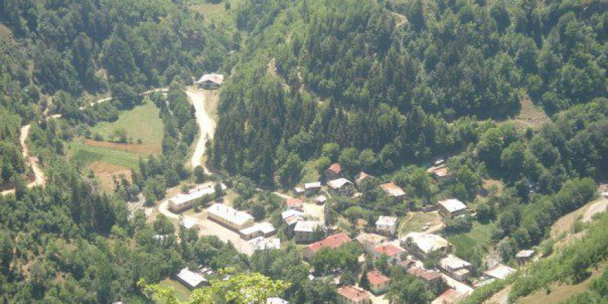Dereli Sarıyakup Köyü Resimleri