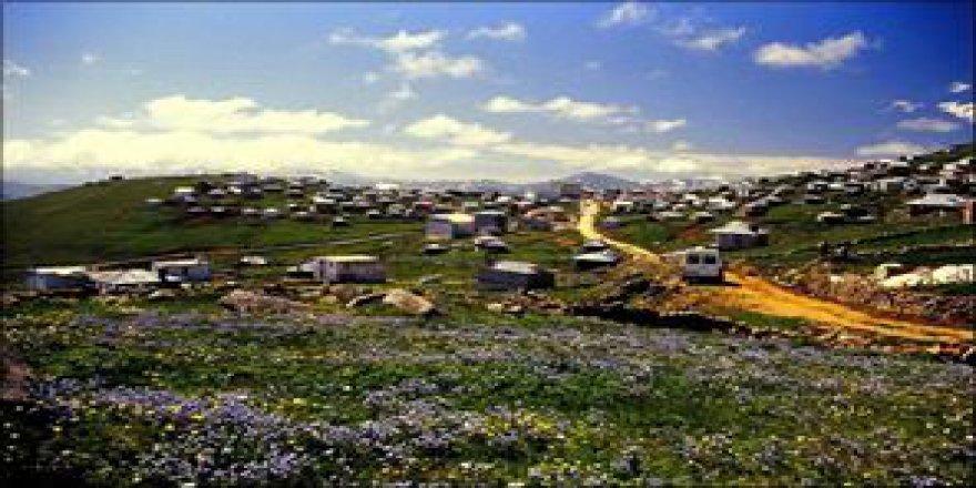 Dereli Yuva Köyü Resimleri