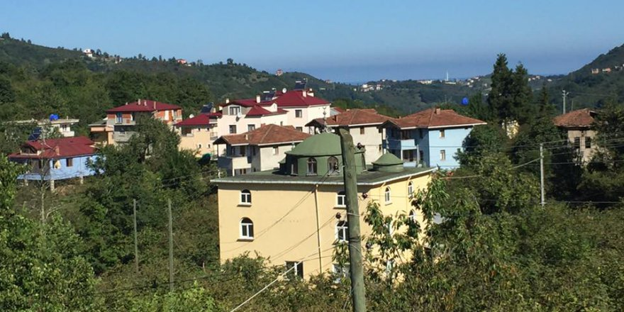 Araklı Ortaköy Köyü Resimleri