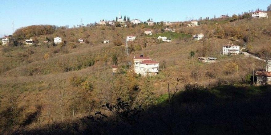 Araklı Taşönü Köyü Resimleri