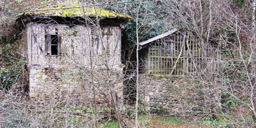 Araklı Taştepe Köyü Resimleri