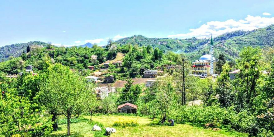 Espiye Çepni Köyü Resimleri