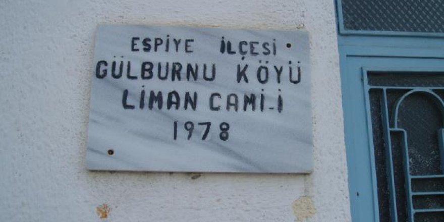 Espiye Gülburnu Köyü Resimleri