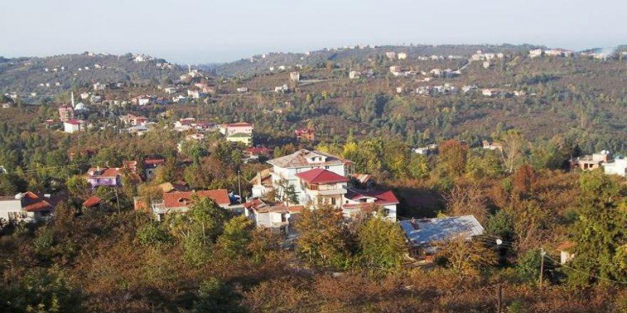 Araklı Yeşilce Köyü Resimleri