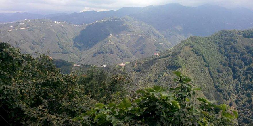 Espiye Güneyköy Köyü Resimleri