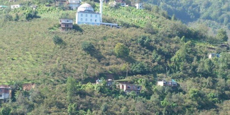 Arsin Çardaklı Köyü Resimleri