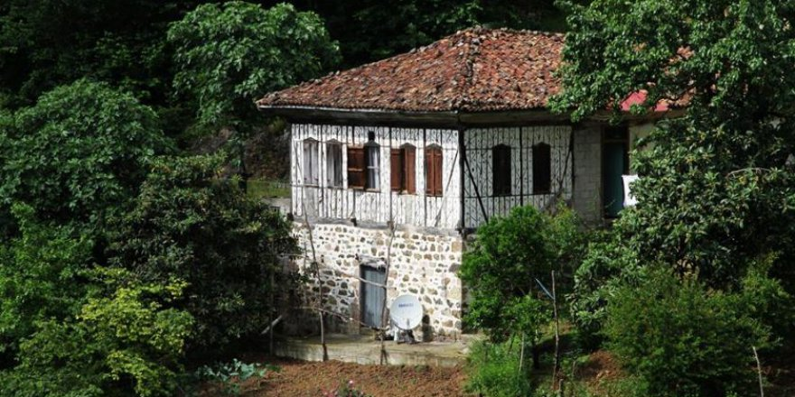 Arsin Çiçekli Köyü Resimleri