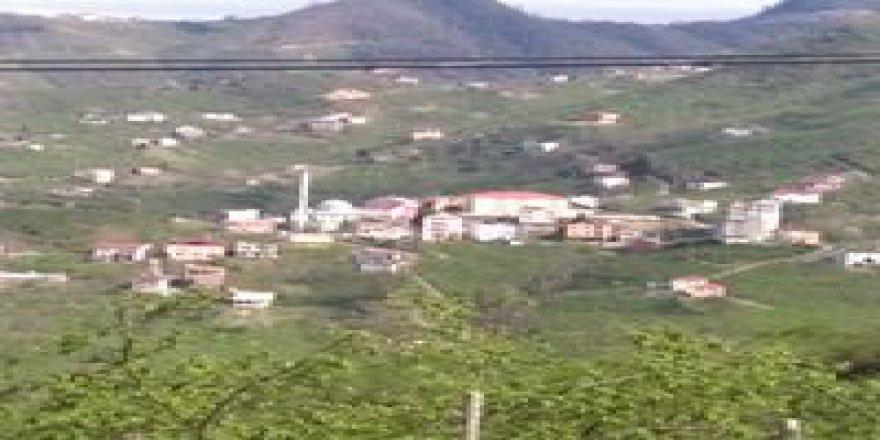 Espiye İbrahimşeyh Köyü Resimleri