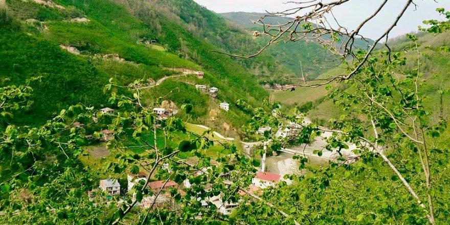 Espiye Kurugeriş Köyü Resimleri