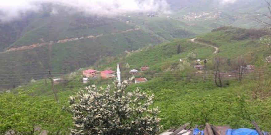 Espiye Şahinyuva Köyü Resimleri
