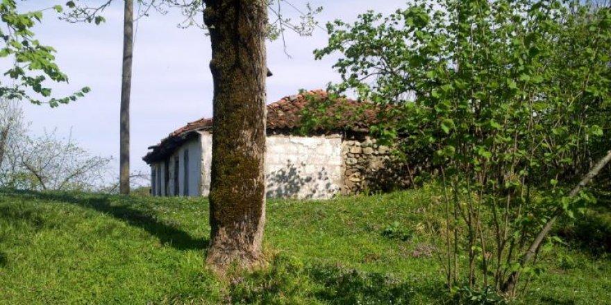 Arsin Elmaalan Köyü Resimleri