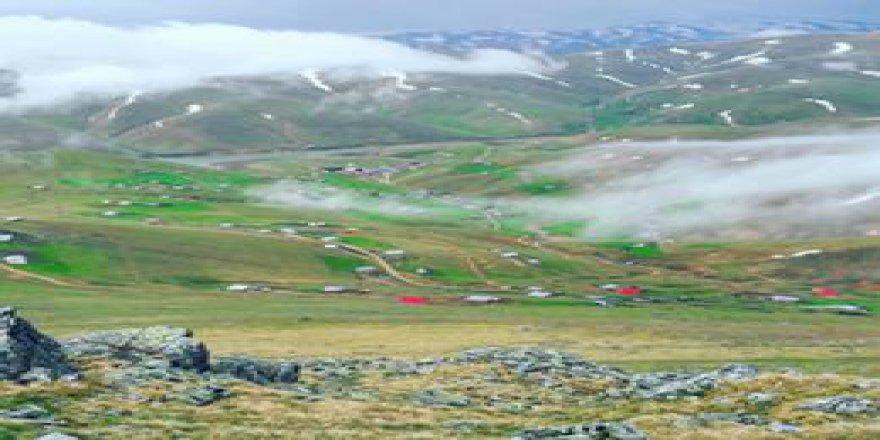 Espiye Taflancık Köyü Resimleri