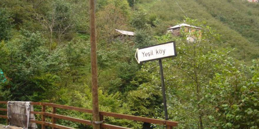 Espiye Yeşilköy Köyü Resimleri
