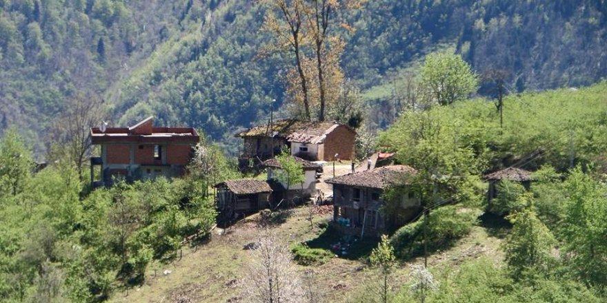 Arsin Güneyce Köyü Resimleri