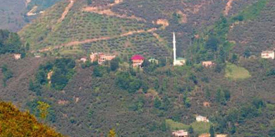 Espiye Yeşilyurt Köyü Resimleri