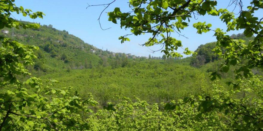 Arsin Harmanlı Köyü Resimleri