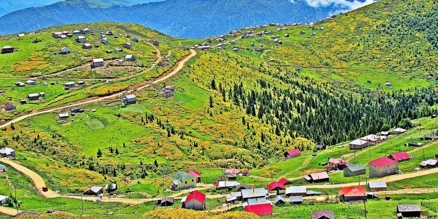 Eynesil Yarımca Köyü Resimleri