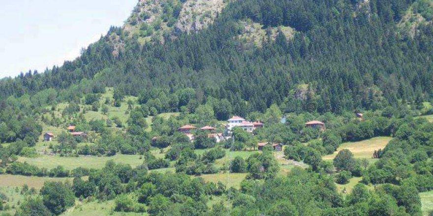 Ağlı Yeşilpınar Köyü Resimleri