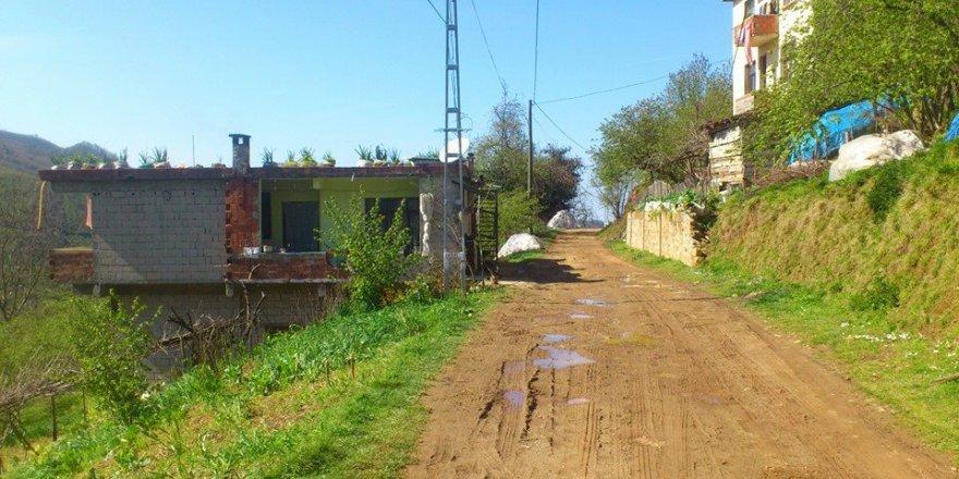 Arsin Özlü Köyü Resimleri
