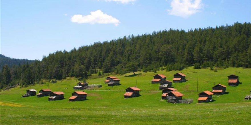 Araç Avlacık Köyü Resimleri