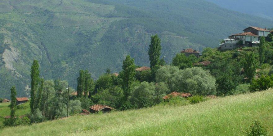 Araç Bahçecik Köyü Resimleri